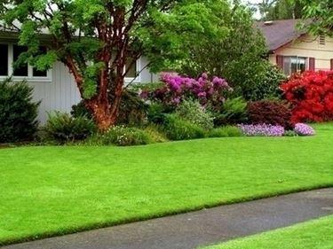 5 idee per il tuo giardino di casa